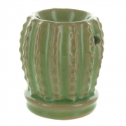 Green And Brown Cactus Oil Burner