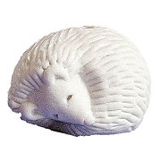 ceramic hedgehog